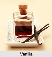 Vanilla, Types of Spice