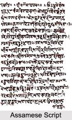 Assamese Language, Languages of India