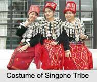 Singpho Tribe, Tribes of Arunachal Pradesh
