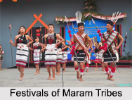 Maram Tribes, Tribes of Manipur