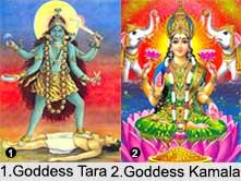 Ten Mahavidyas