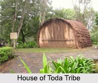 Toda Tribe, Tribes of Karnataka