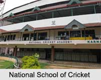 Indian Cricket Clubs, Indian Cricket
