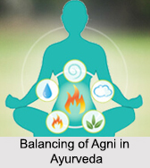 Balancing of Agni in Ayurveda