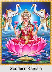 Goddess Kamala, Ten Mahavidyas, Indian Goddess