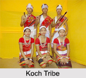 Koch Tribe, Meghalaya, Indian Tribals