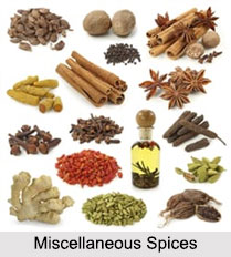 Miscellaneous Spices, Indian Spices