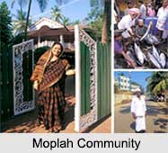 Moplah Community, Islam, Indian Community