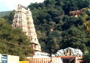 Kallazhagar Koil Temple, Tamil Nadu