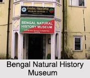 Bengal Natural History Museum, Darjeeling, West Bengal