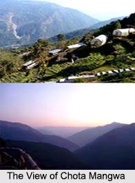 Chota Mangwa, Darjeeling