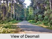 Deomali, Tirap, Arunachal Pradesh