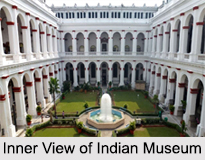 Indian Museum, Kolkata, West Bengal