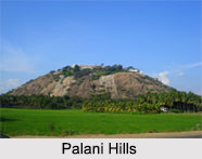 Palani Hills, Western Ghats