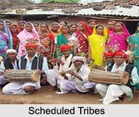 Development of Scheduled Tribes in India, Indian Tribes