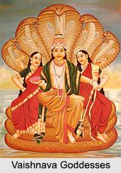 Vaishnava Goddesses