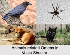 Omens, Vastu Shastra