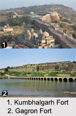 Forts in Rajasthan, Indian Monuments