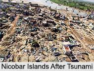 History of Nicobar Islands, Nicobar Islands