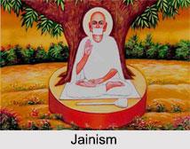 Non-Canonical Jain Literature
