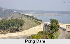 Pong Dam, Himachal Pradesh