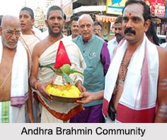 Andhra Brahmin Community, Brahmin Caste