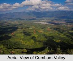 Cumbum Valley, Theni District
