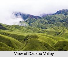 Dzukou Valley, Manipur