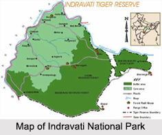 Indravati National Park, Chhattisgarh