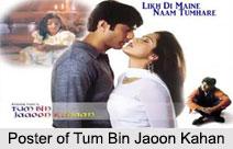 Tum Bin Jaoon Kahan, TV Serial