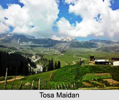 Tosa Maidan, Jammu and Kashmir