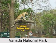 Vansda National Park, Gujarat