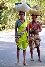 Koli Tribe