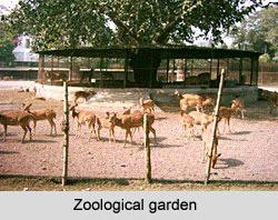 Kolkata Zoo