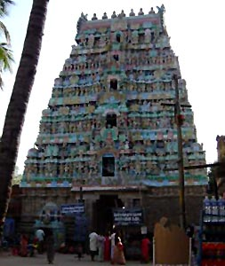 Sri Naganathaswamy temple in Thanjavur District, Tamil Nadu