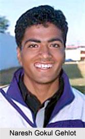 Naresh Gokul Gehlot, Rajasthan Cricketer
