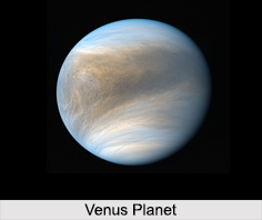 Venus Planet, Horoscope