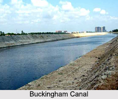 Buckingham Canal, Andhra Pradesh