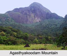 Agasthyakoodam Mountain, Kerala