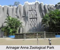 Arignar Anna Zoological Park, Chennai, Tamil Nadu