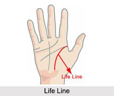 Life Line, Palmistry
