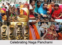 Naga Panchami, Hindu Rituals