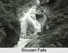 Waterfalls in Tamil Nadu