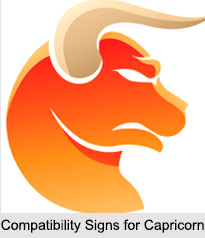 Compatibility Signs for Capricorn, Zodiacs