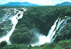 Shivanasamudra falls - The meeting of the Shimsha River with Cauvery