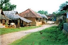 Santhal village