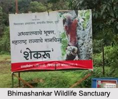 Bhimashankar Wildlife Sanctuary, Pune District, Maharashtra