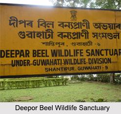 Deepor Beel, Guwahati, Assam