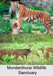 Tourism in Tirunelveli, Tamil Nadu
