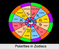 Concepts in Zodiacs